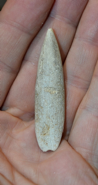 "An Extremely Rare Upper Paleolithic ""Magdalenian"" Mammoth ivory ""Sagaie"" Spear point, France. SOLD"